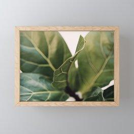 Thin Lines Framed Mini Art Print