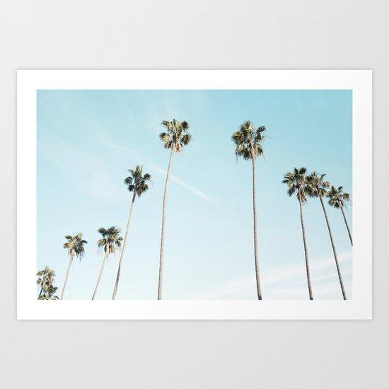 Palm Trees by bandofbasics