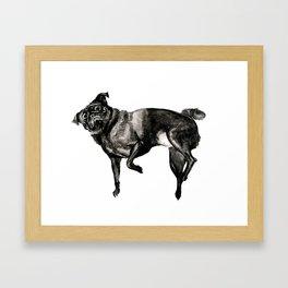 Zen Pug Framed Art Print
