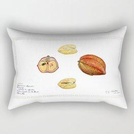 Akee (Blighia sapida) Rectangular Pillow