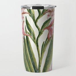 Robert Jacob Gordon - Gladiolus carneus D. Delarochev - 1777 - 1786 Travel Mug