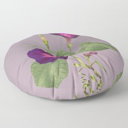 My Morning Glories Floor Pillow
