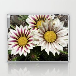 Zany Gazania - red and white stripes Laptop & iPad Skin