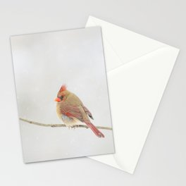 Female Cardinal in Snowfall Stationery Cards
