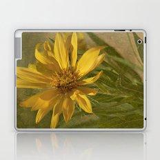 Desert Flower Laptop & iPad Skin