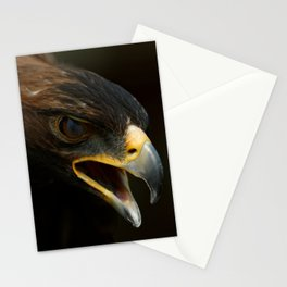 Golden Eagle | Art Print | Wildlife Photography | Nature Stationery Cards
