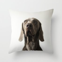Portrait of Dave (7) Throw Pillow