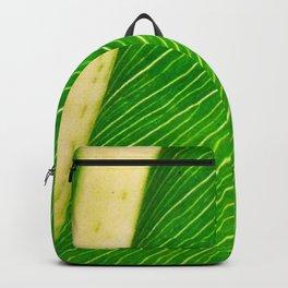 Backside Backpack