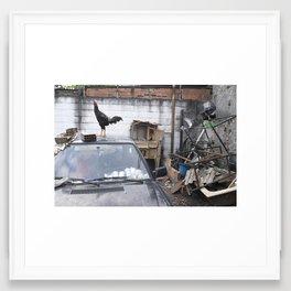 Avian Space (Rio de Janeiro, Brazil)   Framed Art Print