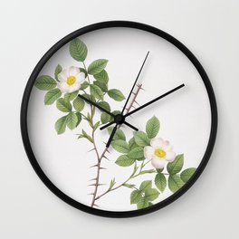 Vintage Spiny Leaved Rose of Dematra Illustration Wall Clock