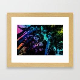 The Palm Trees Under the Seaside Rainbow Framed Art Print