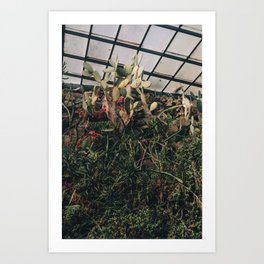 Greenhouse III Art Print