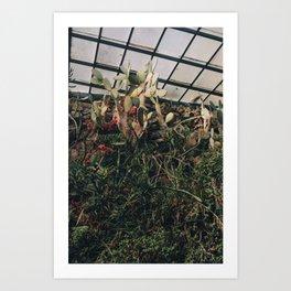 Greenhouse III Art Print
