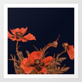 All the Poppies of the Fields Art Print