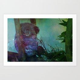 Sleeping Koala in a Tree Art Print
