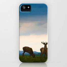 Deer On The Highland iPhone Case