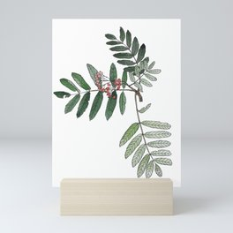 Rowan branch Mini Art Print