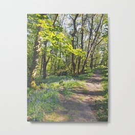 woodland path though bluebells and spring trees Metal Print