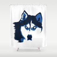 husky Shower Curtains featuring Blue Husky  by Rachel Barrett