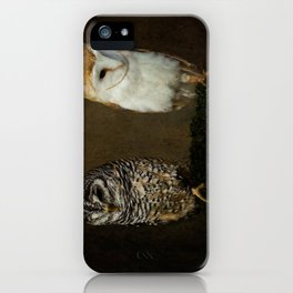 Barn And Tawny Owl iPhone Case