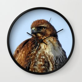 Young Prince of the Skies Wall Clock