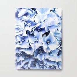 Holy Hydrangea IV Metal Print