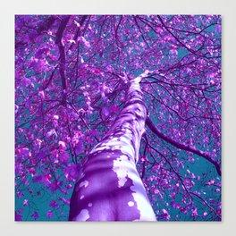 purple tree XXVIII Canvas Print