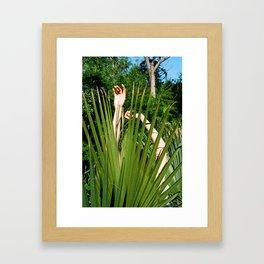 people plants Framed Art Print