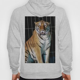 Isolated in the cage Hoody