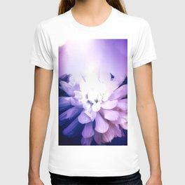 Dahlia, Felt As A Cold Flame T-shirt