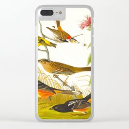 Chestnut-coloured Finch, Black-headed Siskin, Black crown Bunting, Arctic Ground Finch Clear iPhone Case