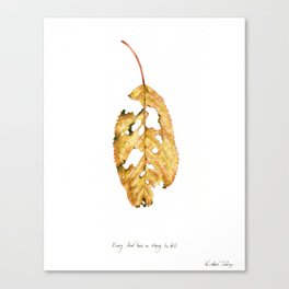 Every leaf has a story to tell Canvas Print