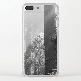 Repose Clear iPhone Case