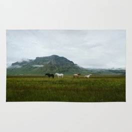 Icelandic Horses Posing for a Photo Rug