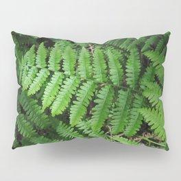 Pointe Ferns 16 Pillow Sham