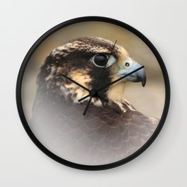 Vignetted Profile of a Peregrine Falcon Wall Clock