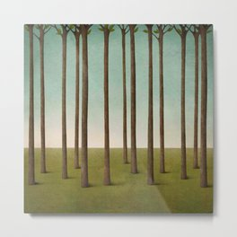 tree trunks and field in forest Metal Print