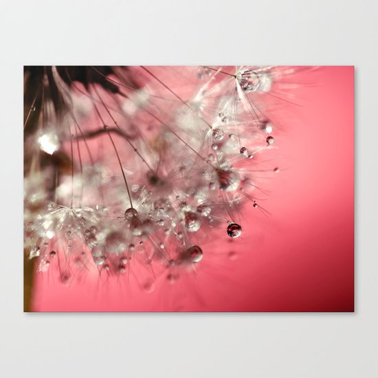 New Year's Pink Champagne Canvas Print
