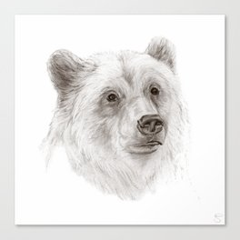 Grizzly :: A North American Brown Bear Canvas Print