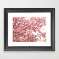 Shabby Chic Pink Blossom Spring Trees Nature Prints and Home Decor Framed Art Print