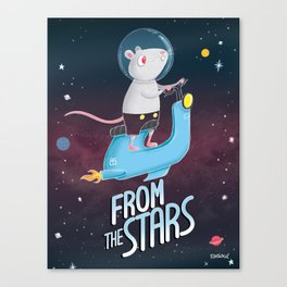 from the stars Canvas Print