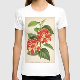 Flower hibiscus rosa sinensis lucien linden13 T-shirt