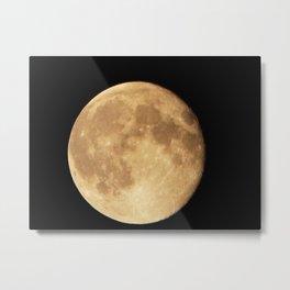 August 2014 Super Moon Metal Print