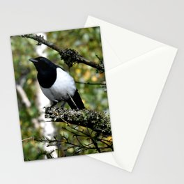 Eurasian Magpie Stationery Cards