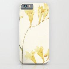 IV. Vintage Flowers Botanical Print by Pierre-Joseph Redouté - Sisyrinchium Collinum iPhone 6s Slim Case