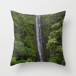 Stunning Plunging Waterfall Throw Pillow