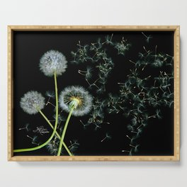 Blowing Dandelions, Scanography Serving Tray