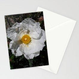 Spanish Jara (Cistus) Stationery Cards