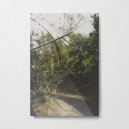 Rainforest Droplets Metal Print