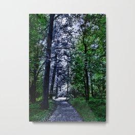 Waldweg Bergpark Wilhelmshöhe Metal Print